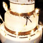 Your-on-fire-Miami-Beach-Florida-pop-out-large-cake-36
